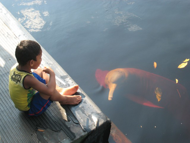rio negro amazonas delfin pareja con botas
